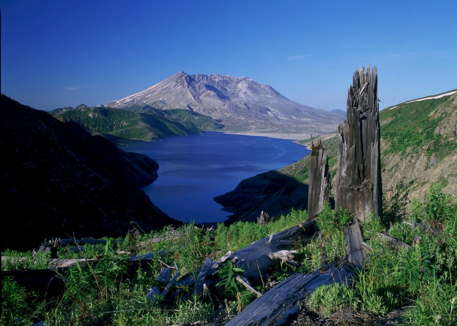 Hotels Near Mt St Helens National Park