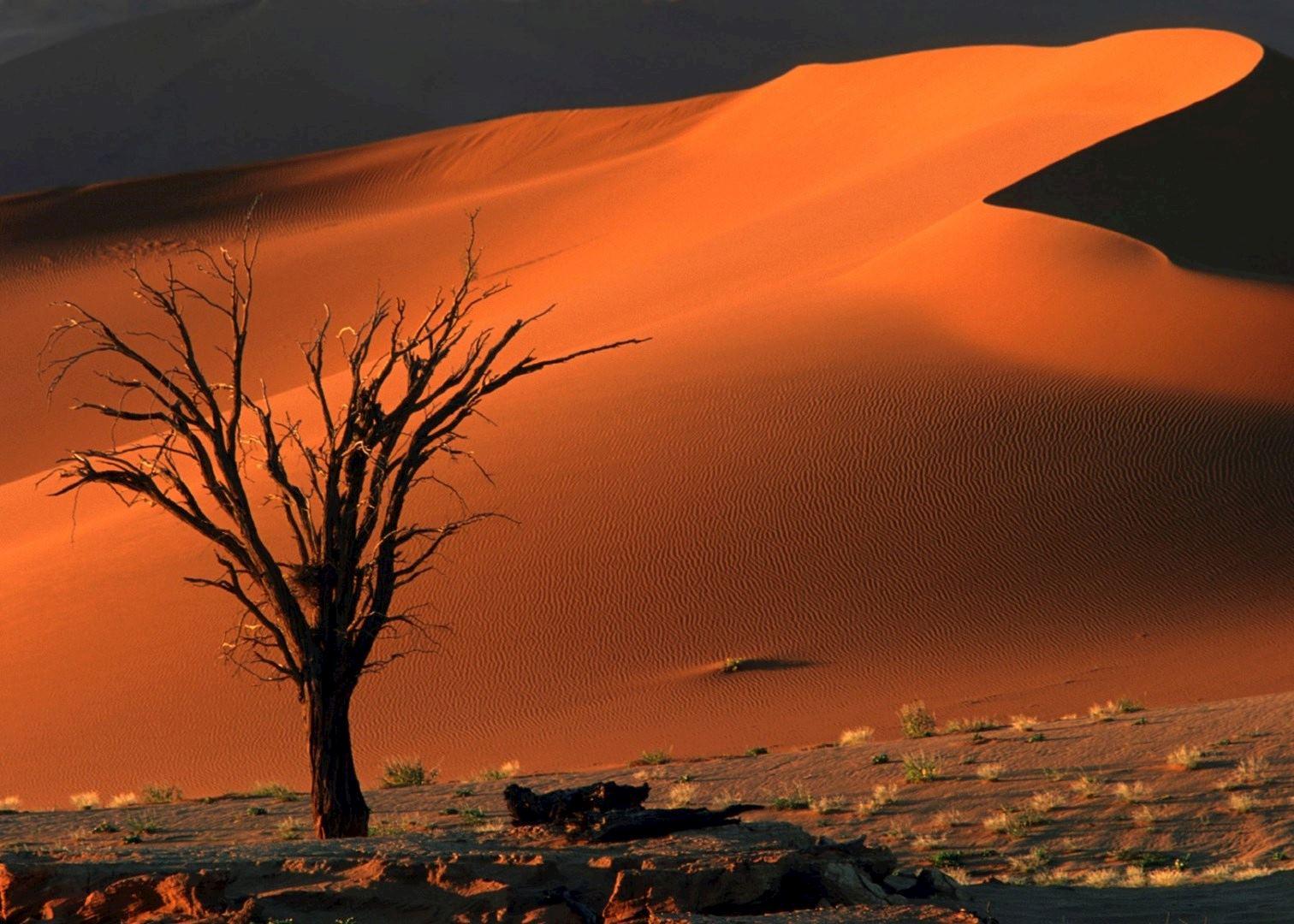 Visit Sossusvlei Amp Sesriem In Namibia Audley Travel