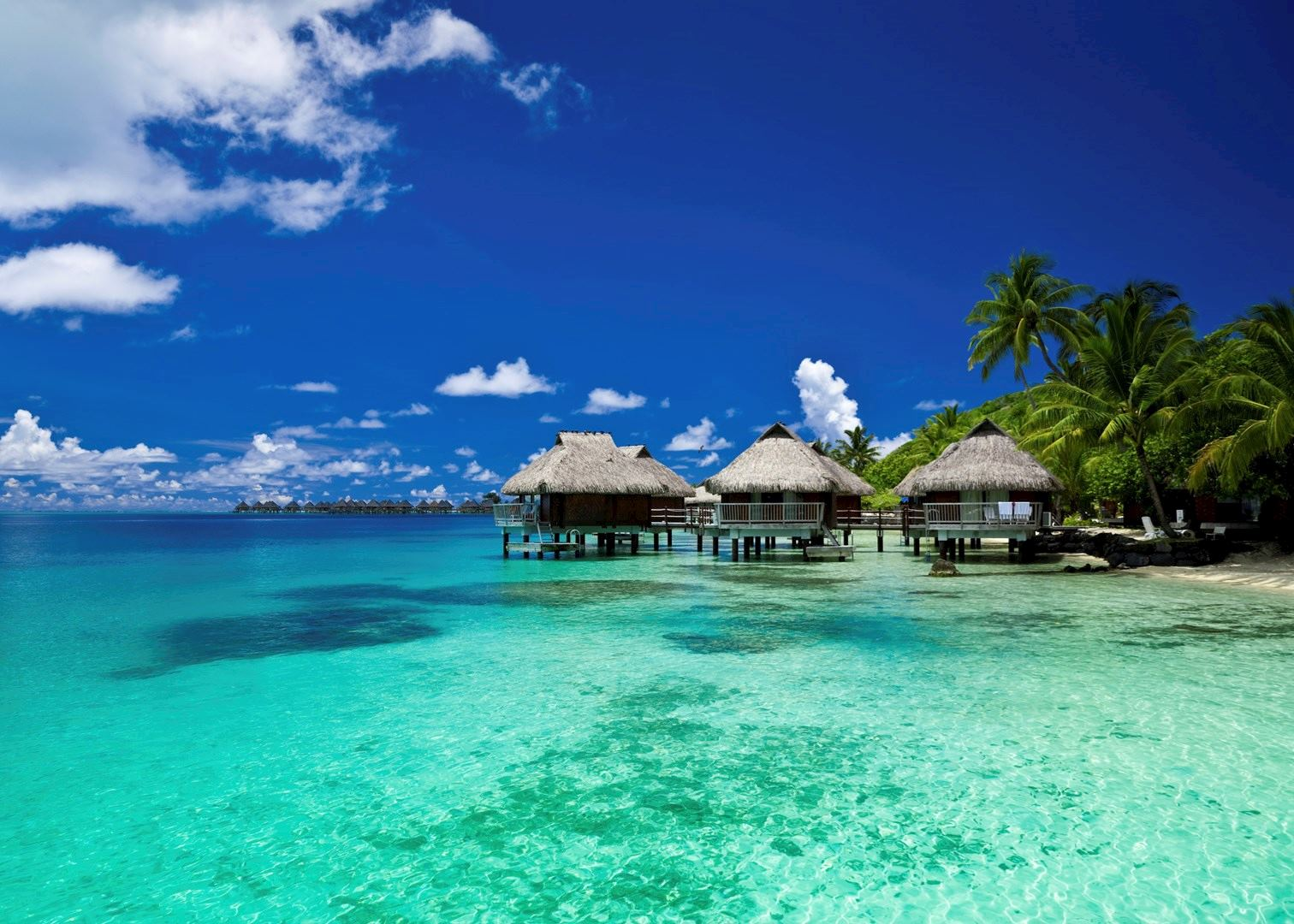 french polynesia honeymoons travel guide audley travel. Black Bedroom Furniture Sets. Home Design Ideas