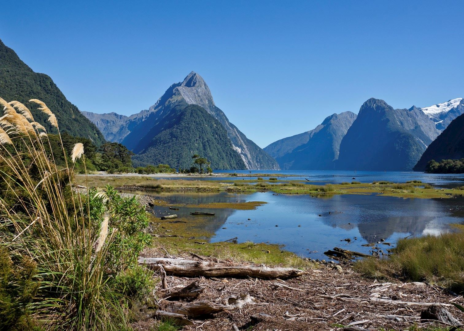 New Zealand: Visit Milford Sound On A Trip To New Zealand