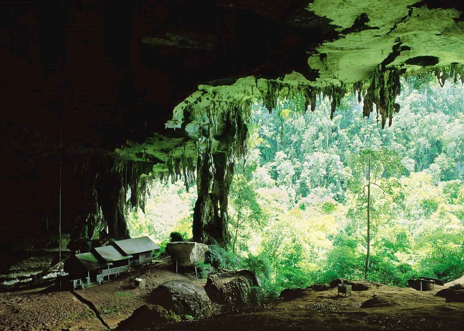 Miri Niah Caves Amp Lambir Hills Audley Travel