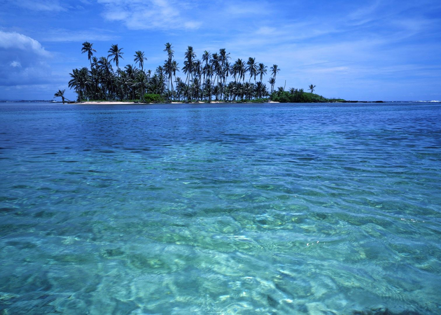 Plan Your Trip to Panama City Beach