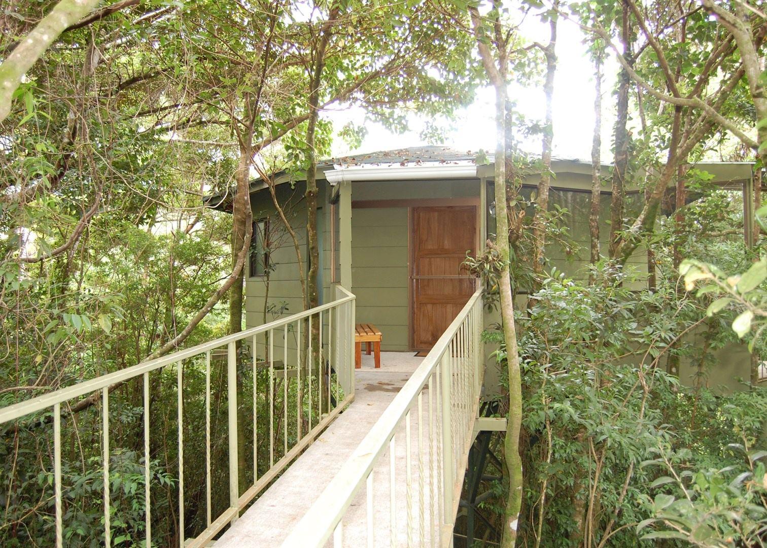 Hidden Canopy Treehouse Monteverde Cloudforest & Hidden Canopy Treehouse | Audley Travel