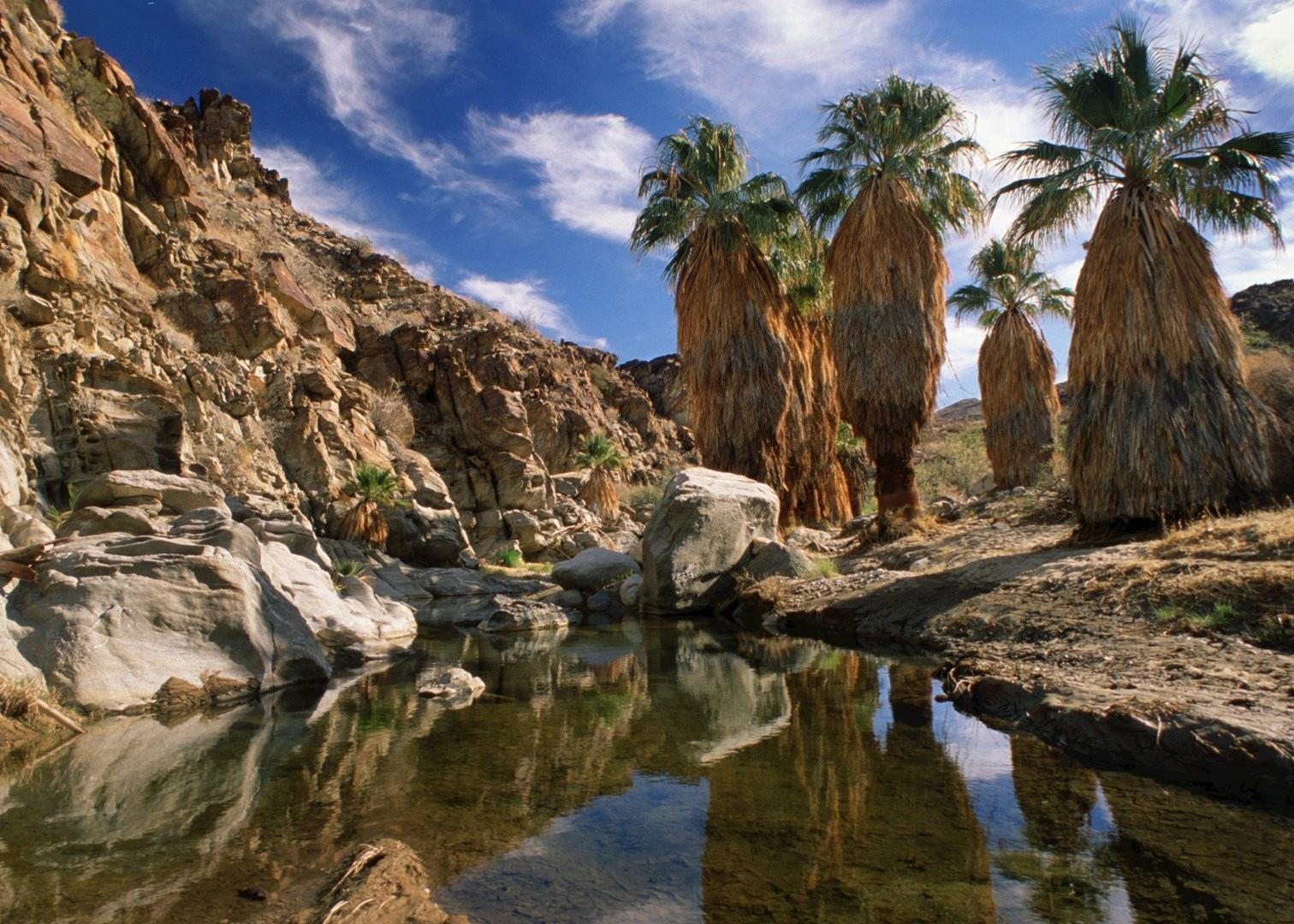 Visit Palm Springs On A Trip To California Audley Travel