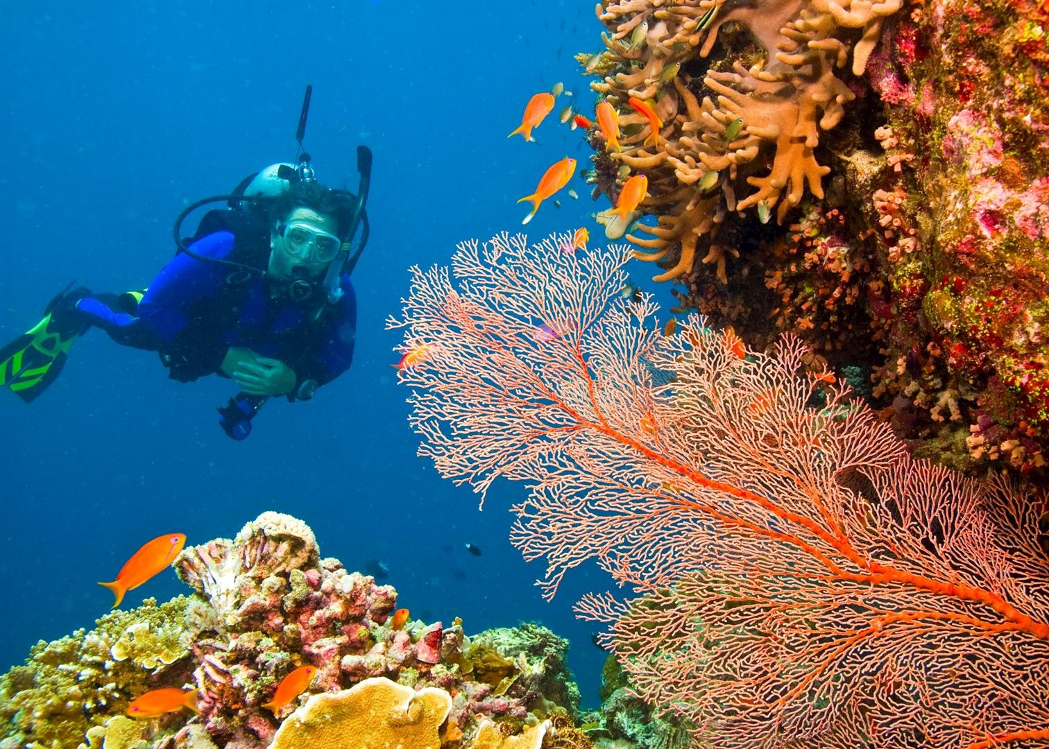 Tailor Made Holidays To Mauritius Audley Travel