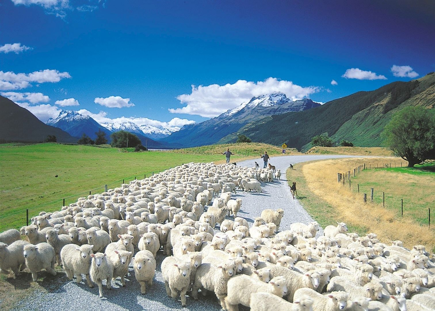 New Zealand News: Visit Glenorchy On A Trip To New Zealand