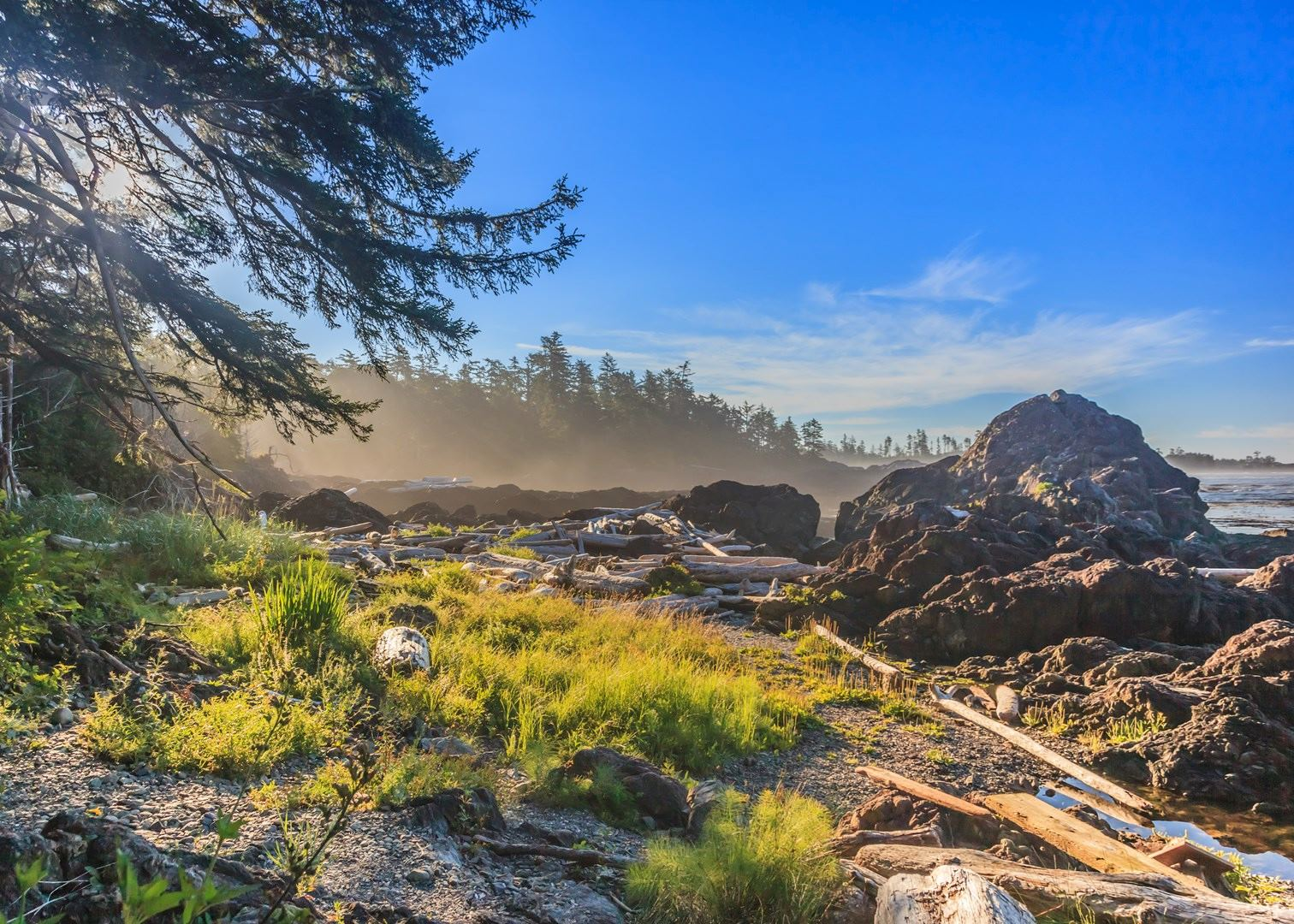 Visit Tofino On A Trip To Canada | Audley Travel