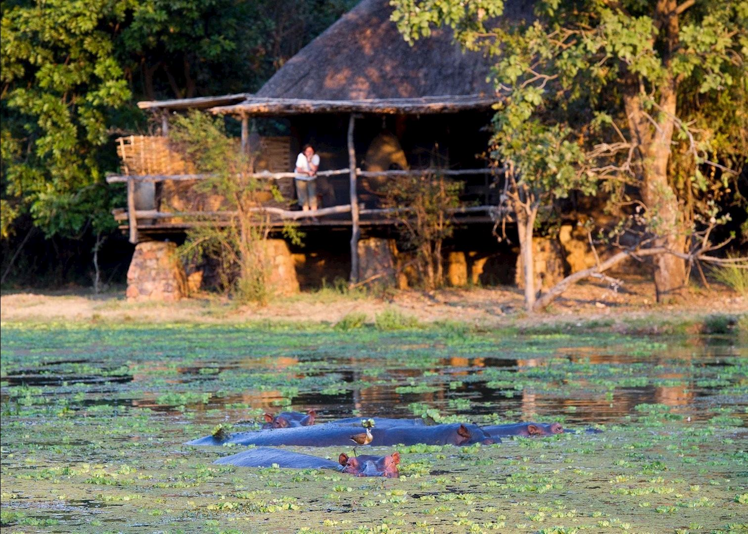 Mfuwe Lodge Audley Travel