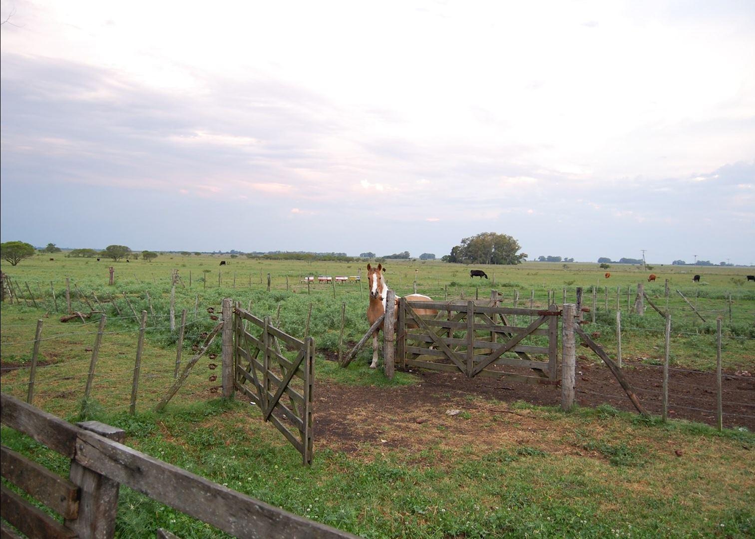 La china casa del campo buenos aires audley travel - Casas del campo ...