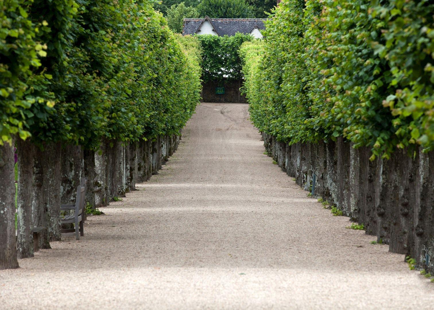 Visit Chateau De Villandry On A Trip To France Audley Travel