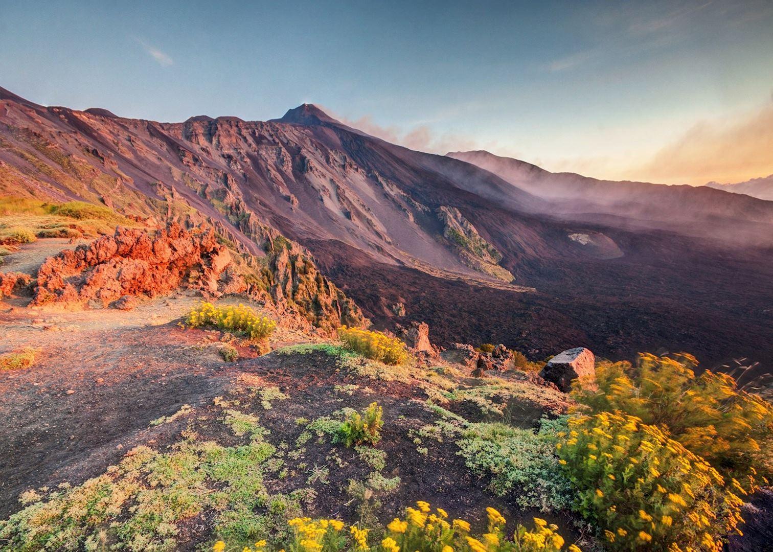 fertile soil volcano - photo #25