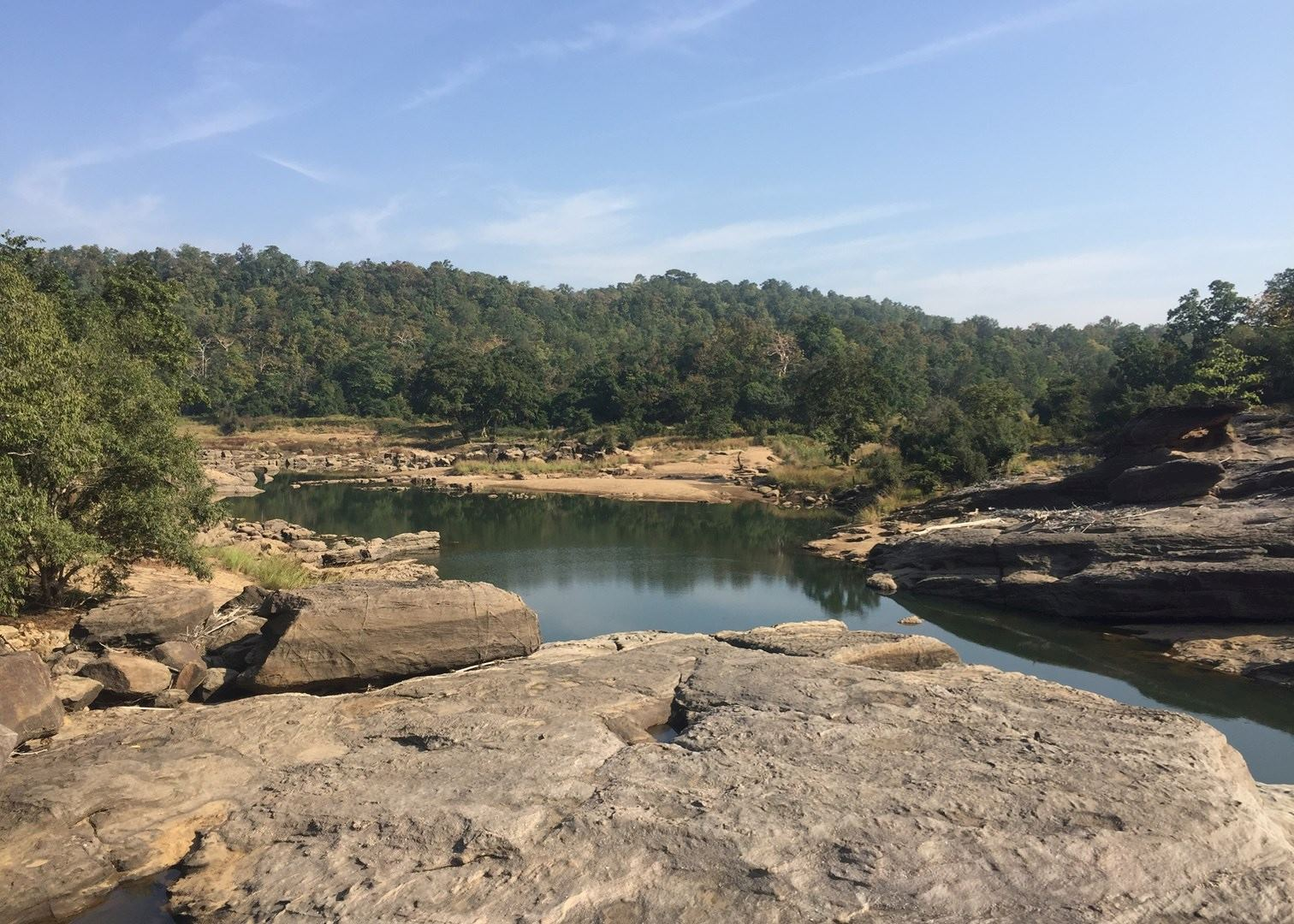 national parks in india The protected national parks of india are the perfect place to see elephants, tigers, and more book an india luxury safari with ker & downey today.
