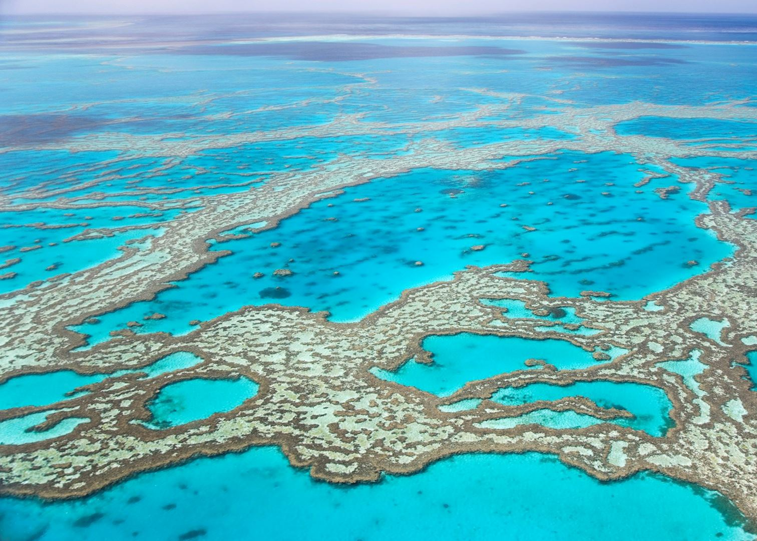 visit the great barrier reef, australia | audley travel