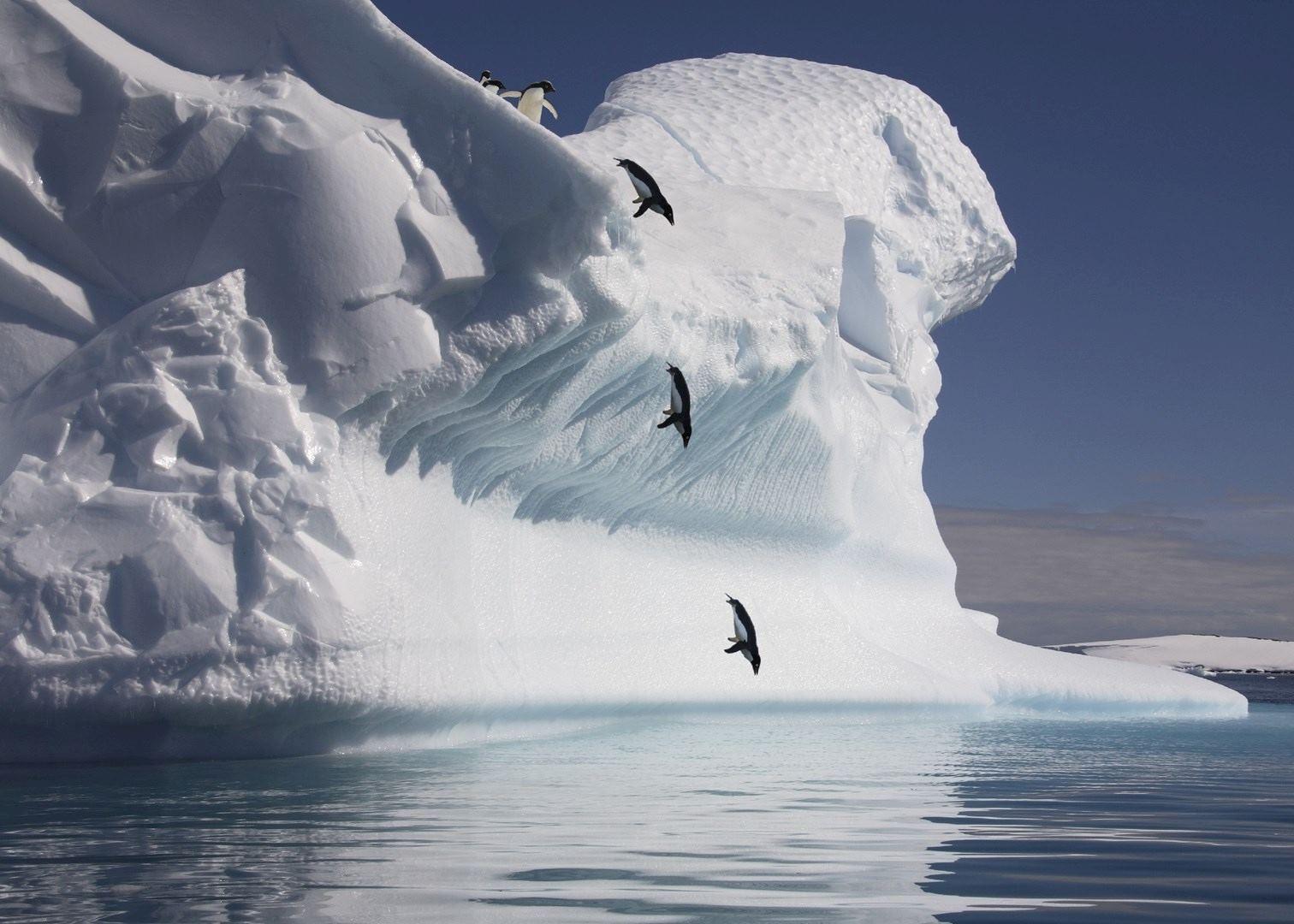 Antarctic Peninsula Cruise Audley Travel