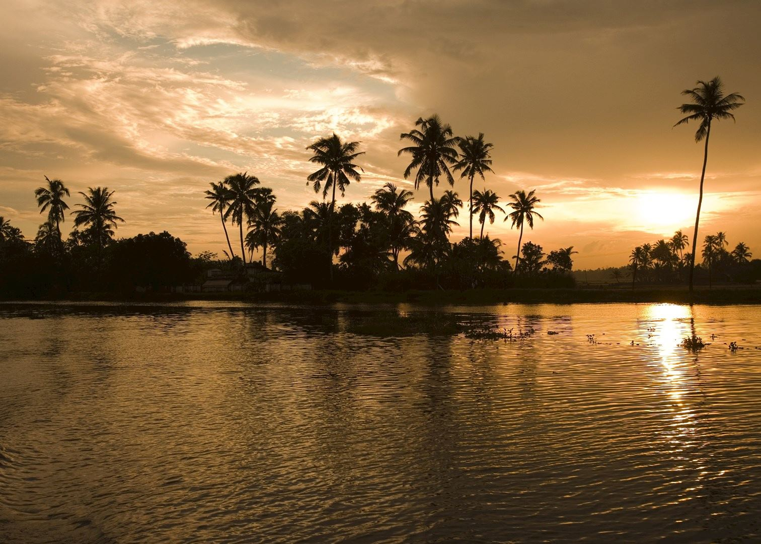 visit the backwaters on a trip to india