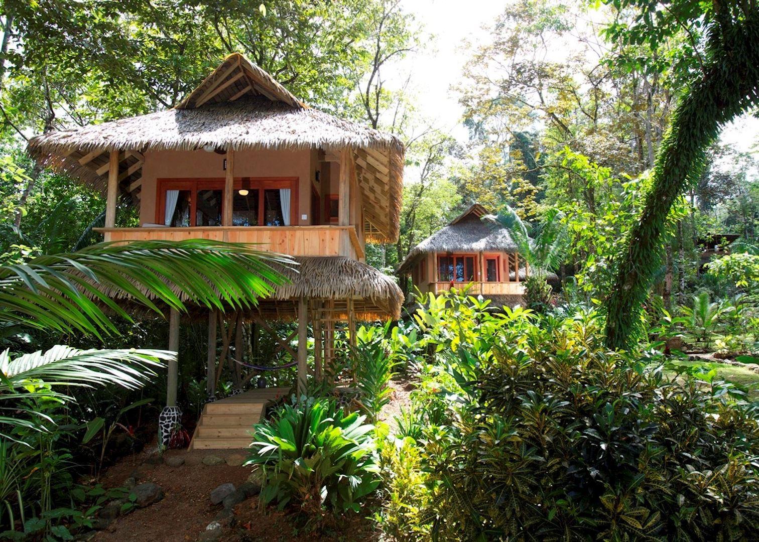 copa de arbol beach and rainforest resort audley travel