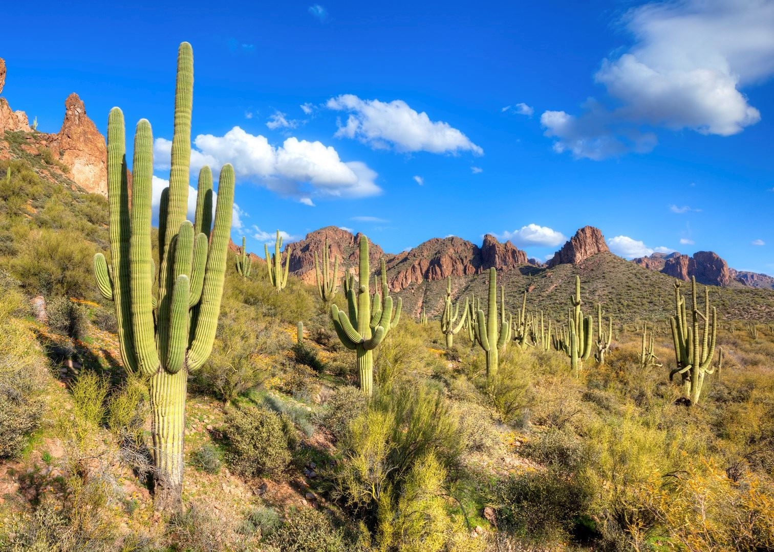 Hotels Near Grand Canyon >> Visit Tucson on a trip to The USA | Audley Travel