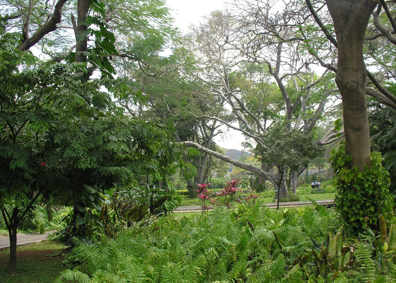 Grounds at the Taj West End Hotel  Bangalore. Taj West End   Hotels in Bangalore   Audley Travel