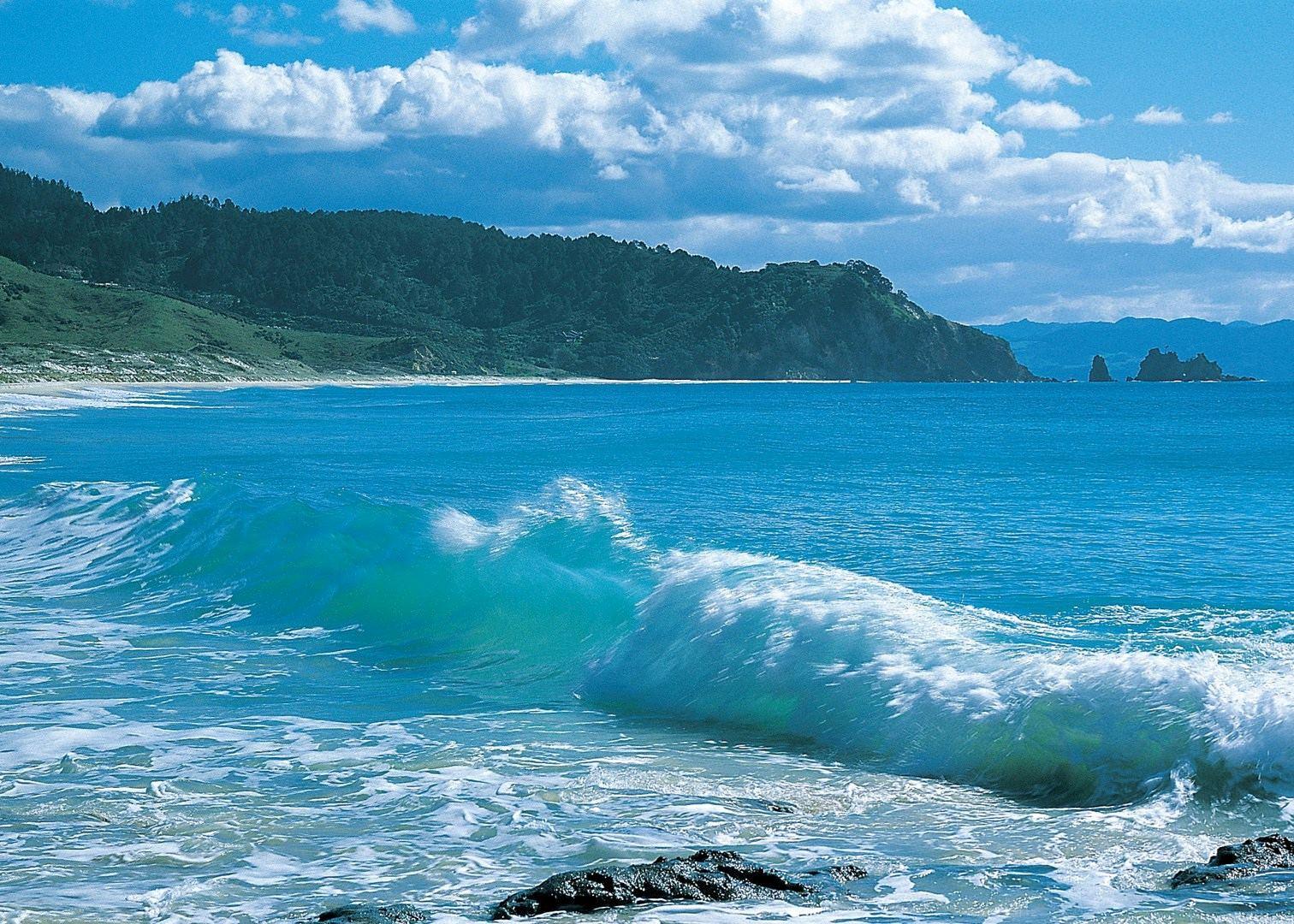 Hot water beach day trip