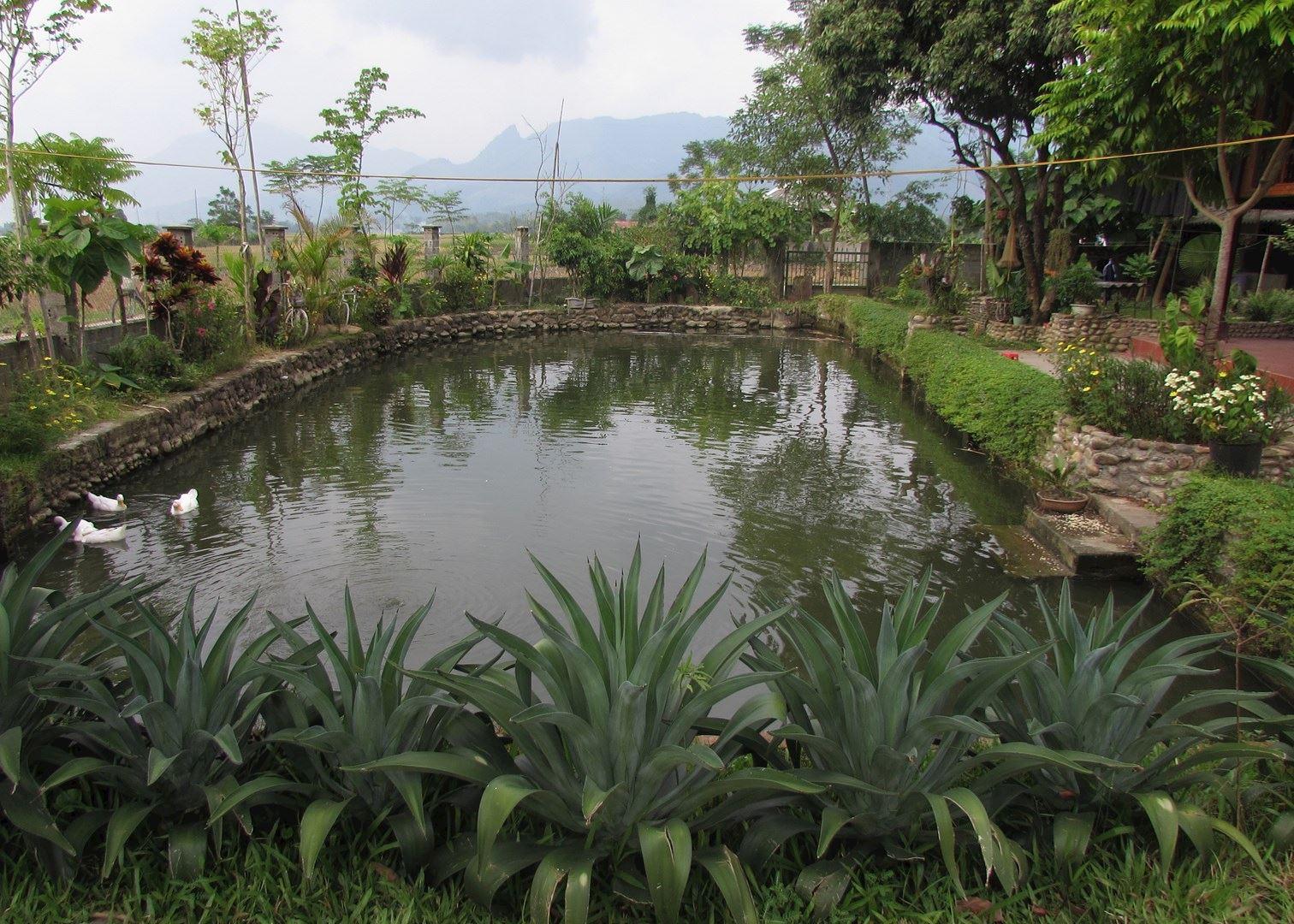 Madam chungs homestay hotels in hanoi audley travel for Garden pool hanoi