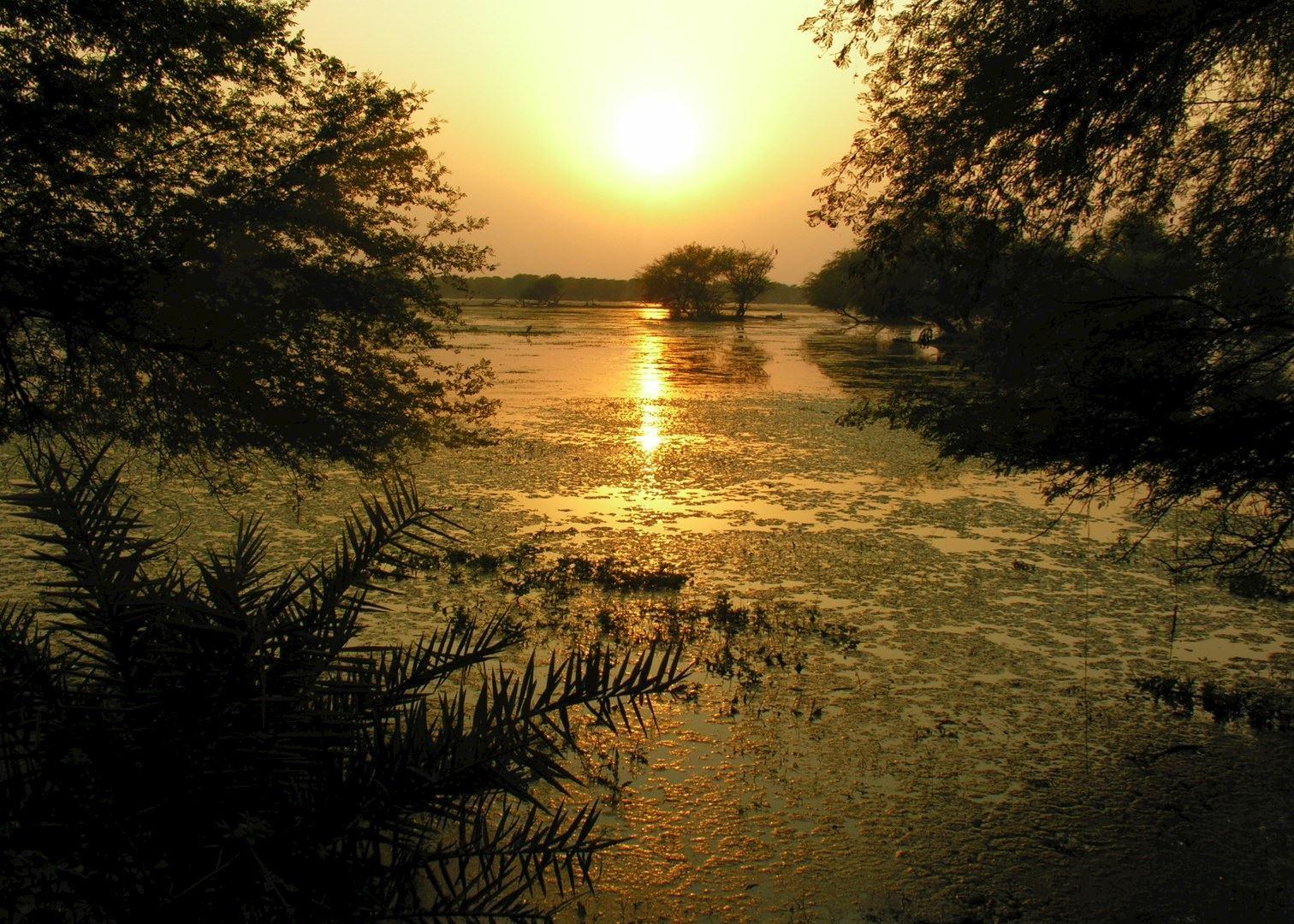 Bharatpur Amp Keoladeo Ghana National Park Audley Travel