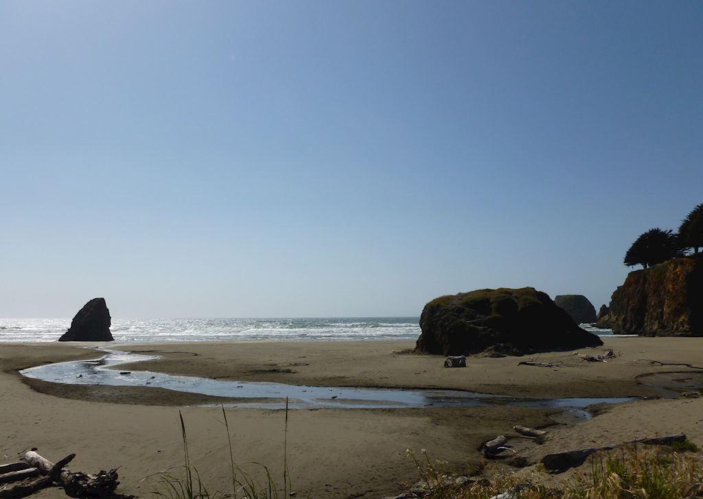 A beach near Highway 101 between Mendocino and Eureka