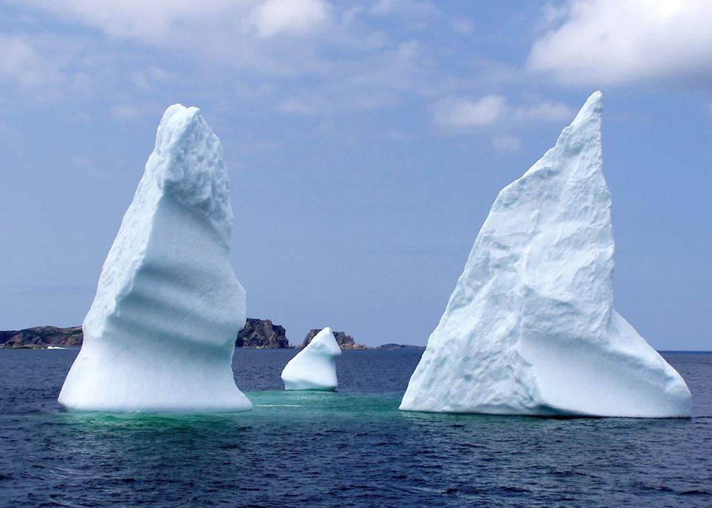 Iceberg Alley, Twillingate
