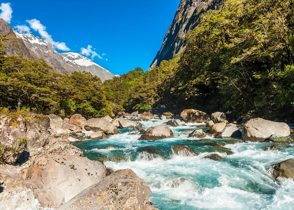 River near Milford Sound, Fiordland