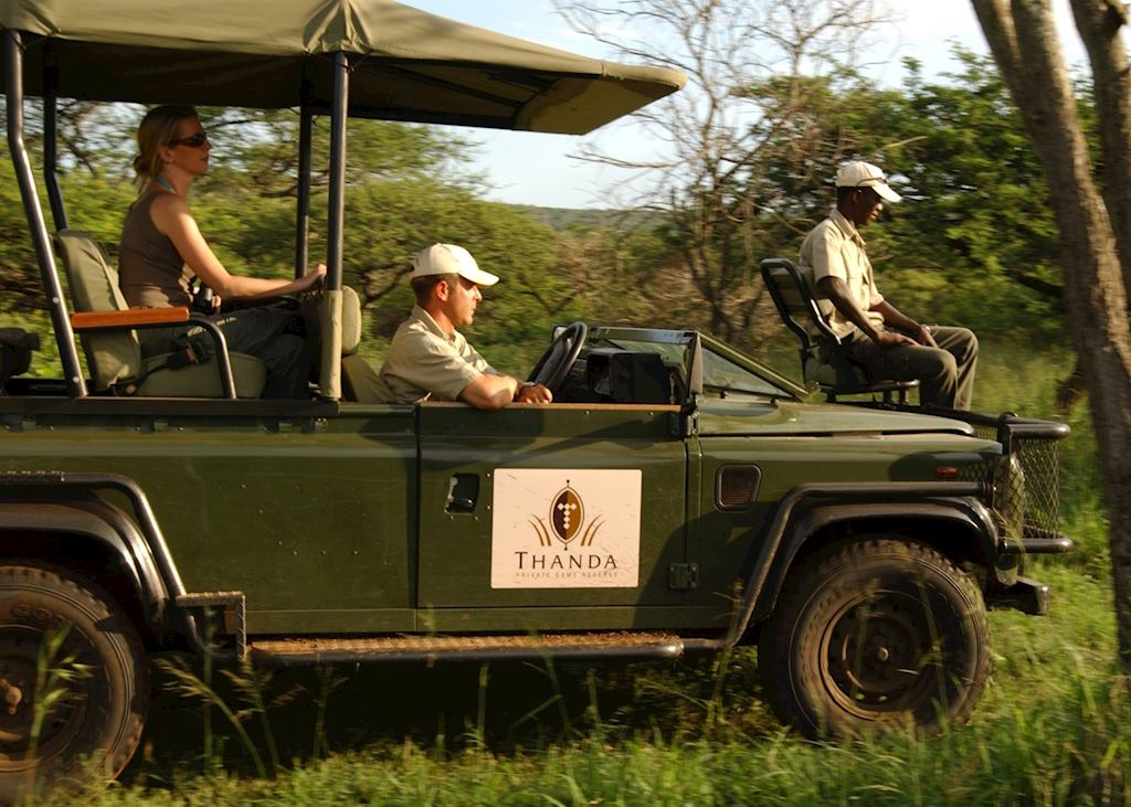 Safari from Thanda Private Reserve