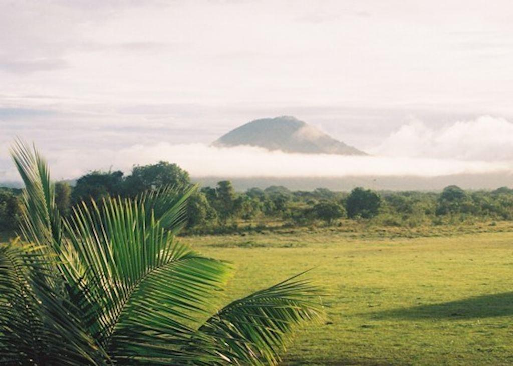 Early morning at Dadanawa, Guyana