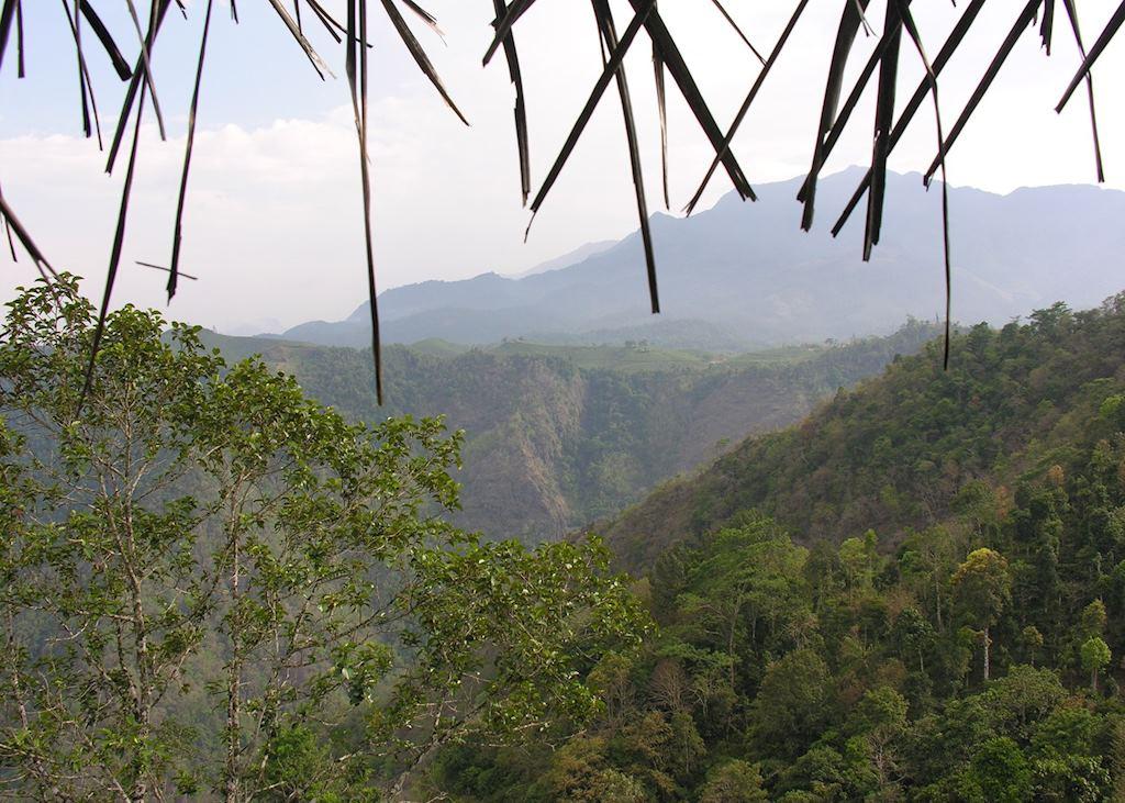 View from Hut, Aranyakam, Wayanad
