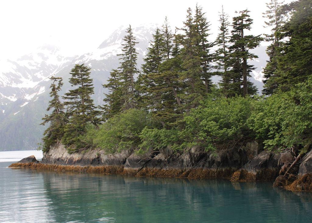 The coastline near Valdez