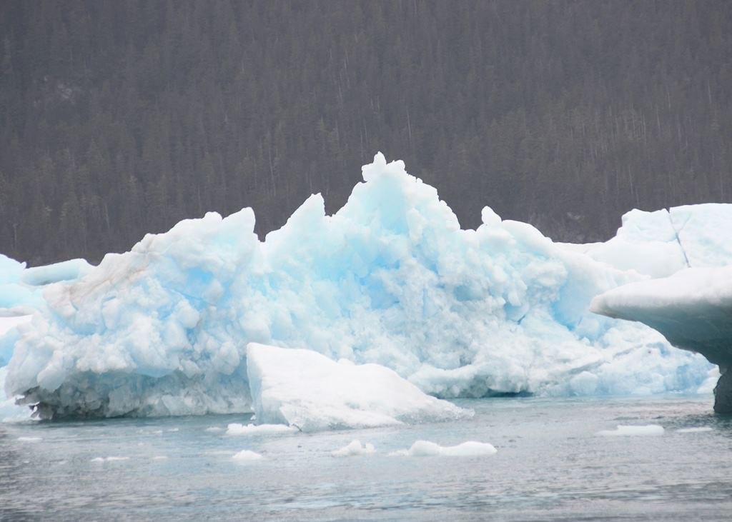 Icebergs in Prince William Sound