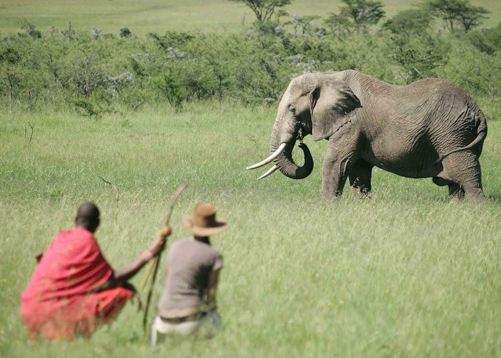 Walking safari at Rekero Tented Camp