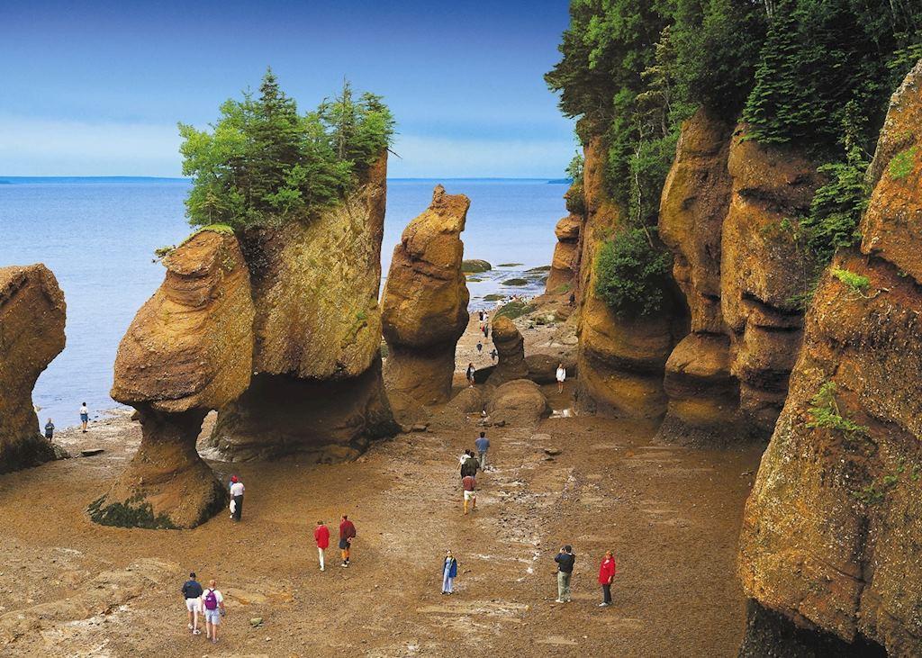 Hopewell Rocks Ocean Tidal Exploration Site, New Brunswick