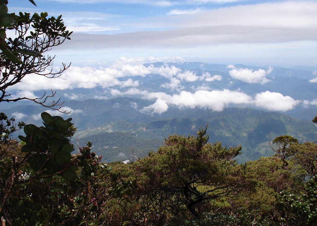Kinabalu National Park, Malaysian Borneo