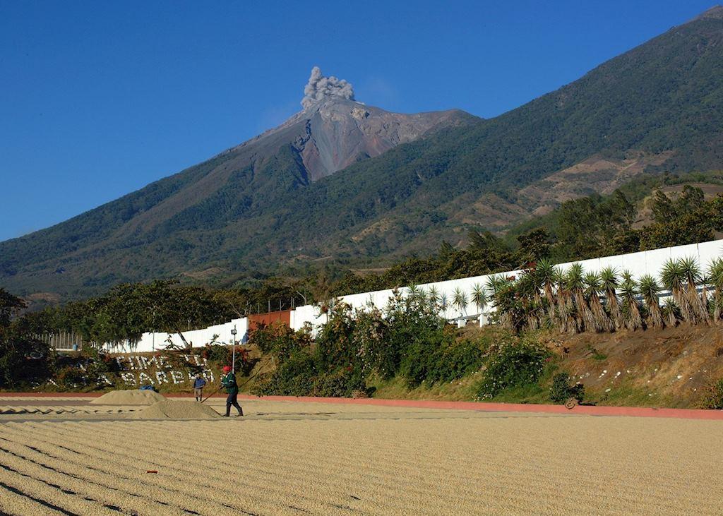 El Fuego Volcano, Antigua, Guatemala