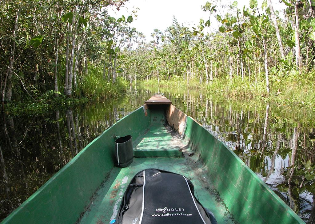 Audley in the Ecuadorian Amazon