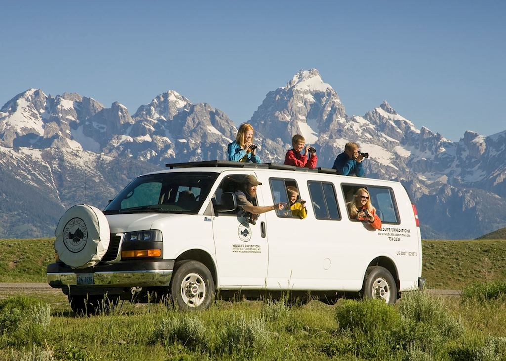 Wildlife viewing in Grand Teton National Park