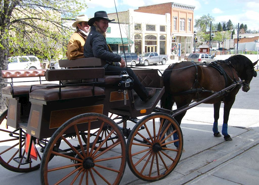 Horse and trap, Buffalo
