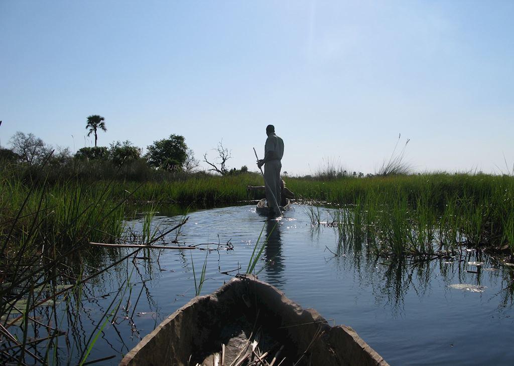 Mokoro trips in the Okavango Delta
