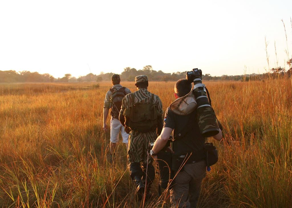 Walking safari from Musekese Bush Camp,Kafue National Park