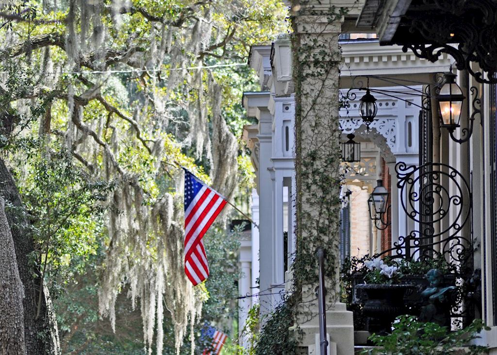 Jones Street flags & spanish moss, Savannah, Georgia