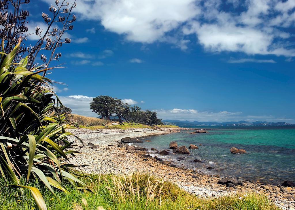 Firth of Thames, Coromandel Peninsular