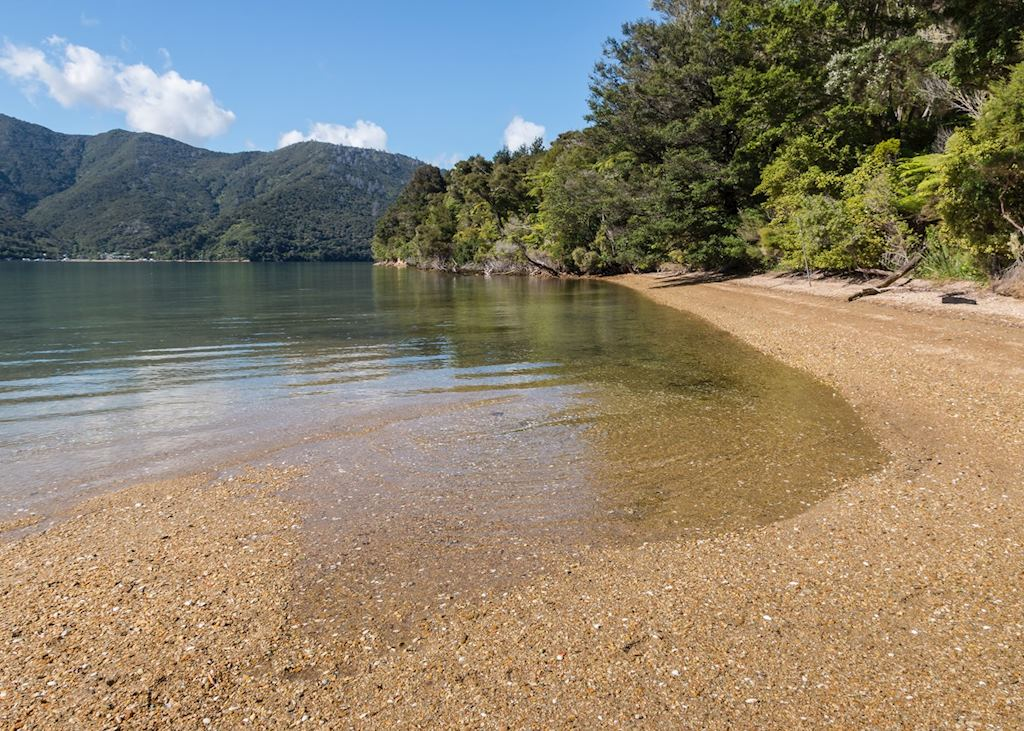 Beach, Queen Charlotte Sound