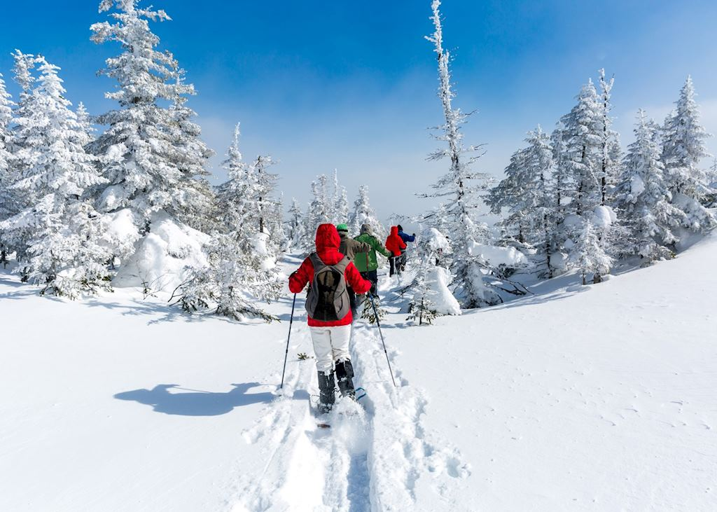 Snowshoeing guided tour