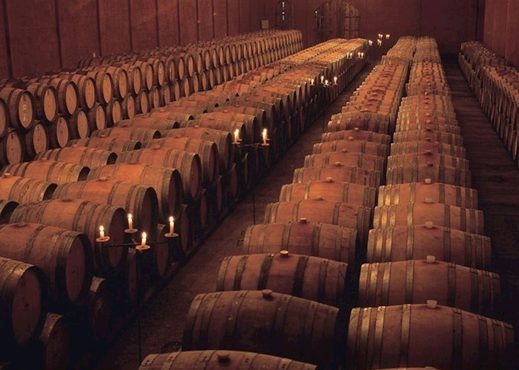 The Barrel Room at a Chilean Winery