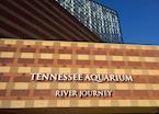 The Tennessee Aquarium, Chattanooga