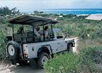 4WD safari from Indigo Bay
