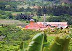 Mauritian rum distillery
